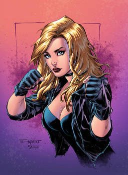 Black Canary Colors