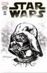 Darth Vader STX commission