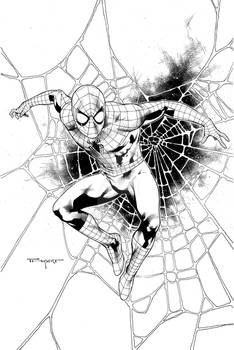 Spiderman with web