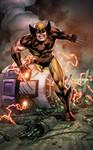 Wolverine Commission 2018