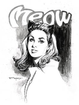 Catwoman '66 meow