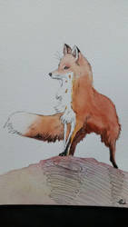 Fox watercolor by misselo83