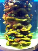 cleveland aquarium 23 by miserychic