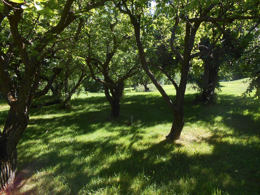 A Dream of Summer 1 by jessamaciejewski