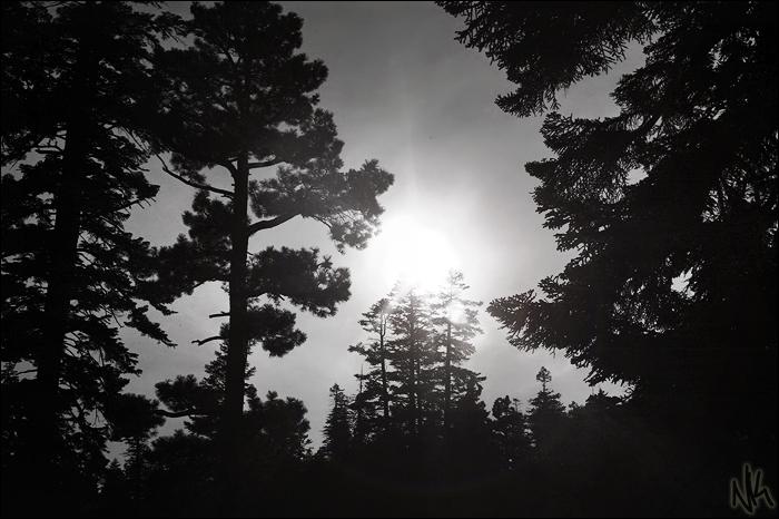 Light in Dark by ieatSTARS