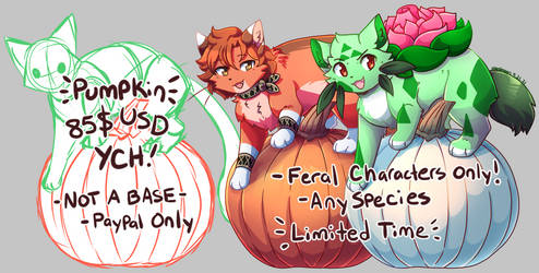 [LIMITED TIME] Pumpkin! \\ YCH