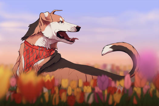 Tip toe thru' the tulips with me