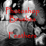 PS Feather Brushes - set 1