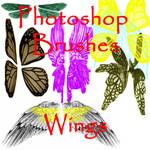 Photoshop Wing Brushes - set 1