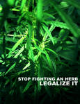 Legalize It - Herb