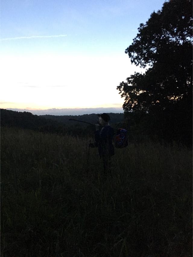 Pale male vagabond on hill by RandomGypsyCat