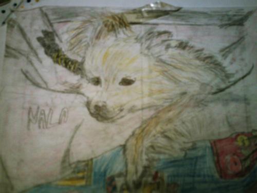 My dog by Lynphavy