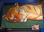 Tiger Cub painting - WIP