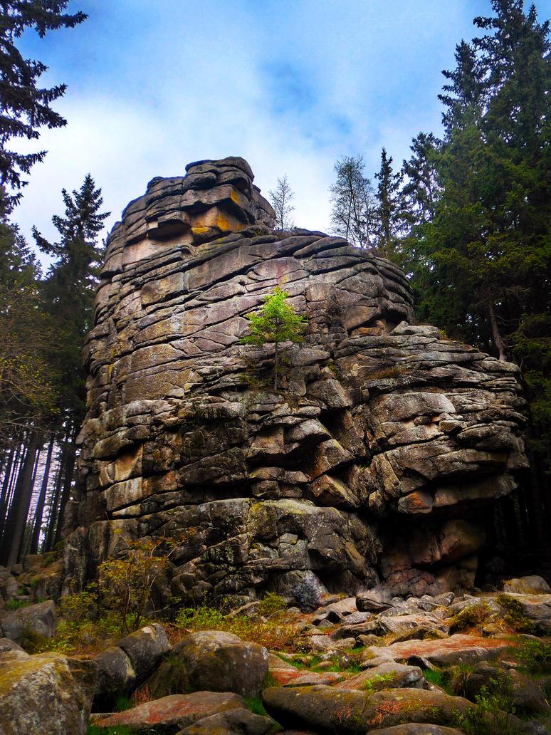 Harz Felsen by MisterMettler