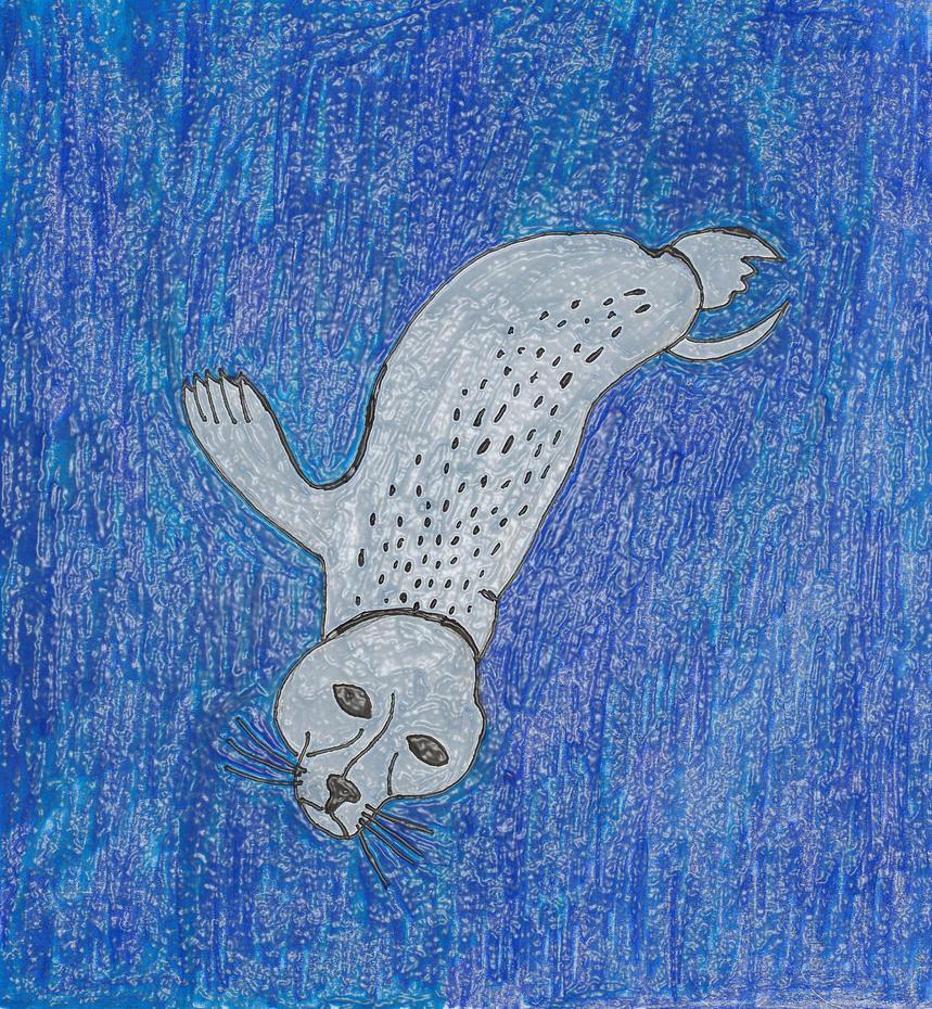 Seal Diving Plastic Wrap Filter by JessieRamoneGirl