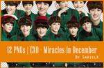 [PNG] EXO Miracles in December