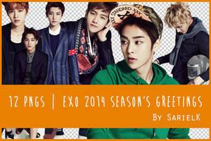 [PNG] EXO 2014 Season's Greetings by sarielk