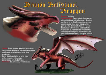 reference sheet Braygon