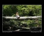 :Luna in the Woods: