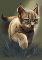 Little hunter by Momentho