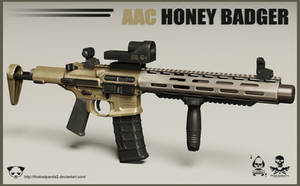 AAC Honey Badger Rifle by TheBadPanda2