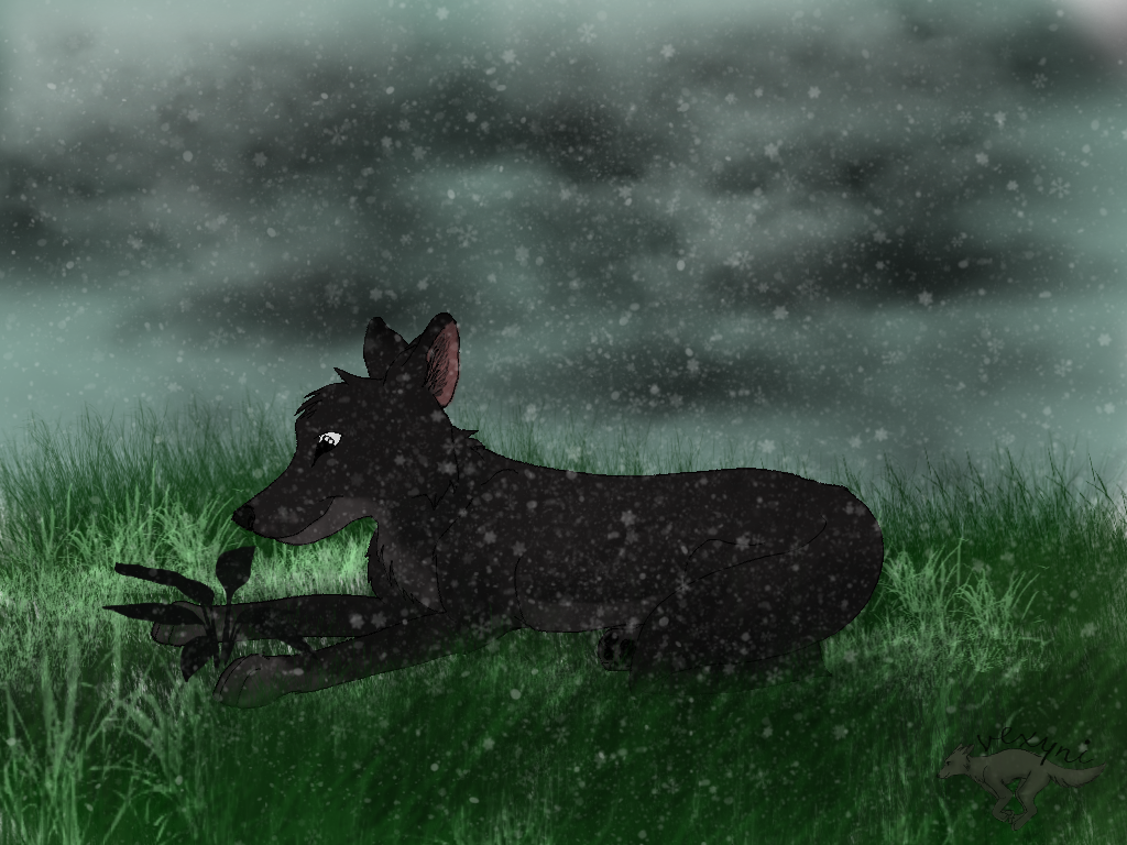 wolf_by_vexyni-d8k9u4a.png