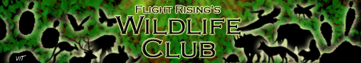 flight_rising_wildlife_club_banner_copy_by_vet_in_training-d9y4cqy.png