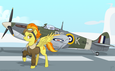 Spitfire and the spitfire by SarmaTeppou
