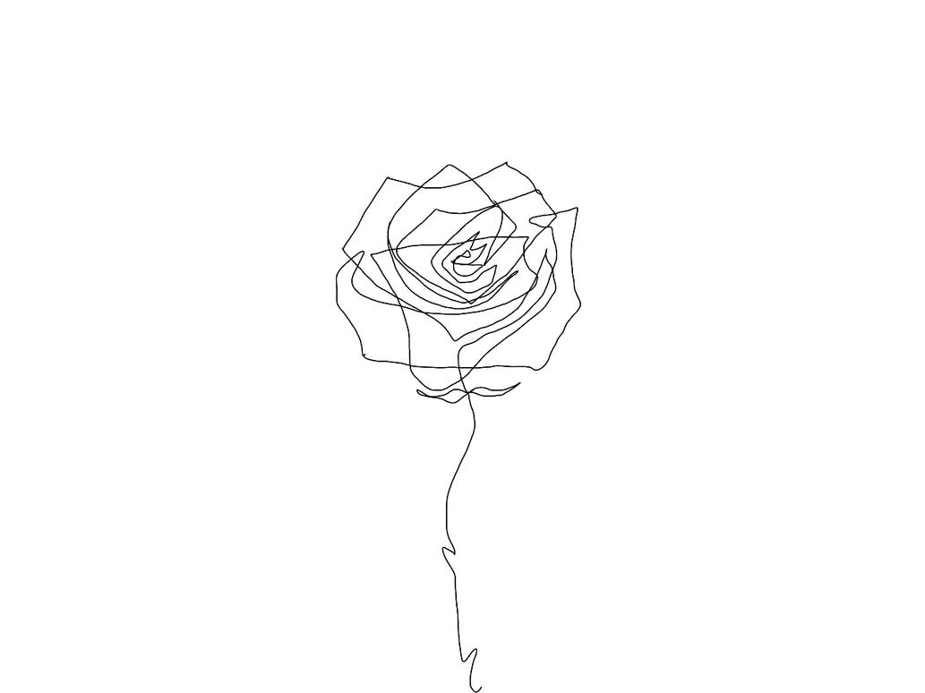 Line Drawing Of Rose Flower : One line rose by aimosan on deviantart