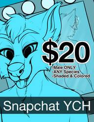 $20 Snapchat YCH