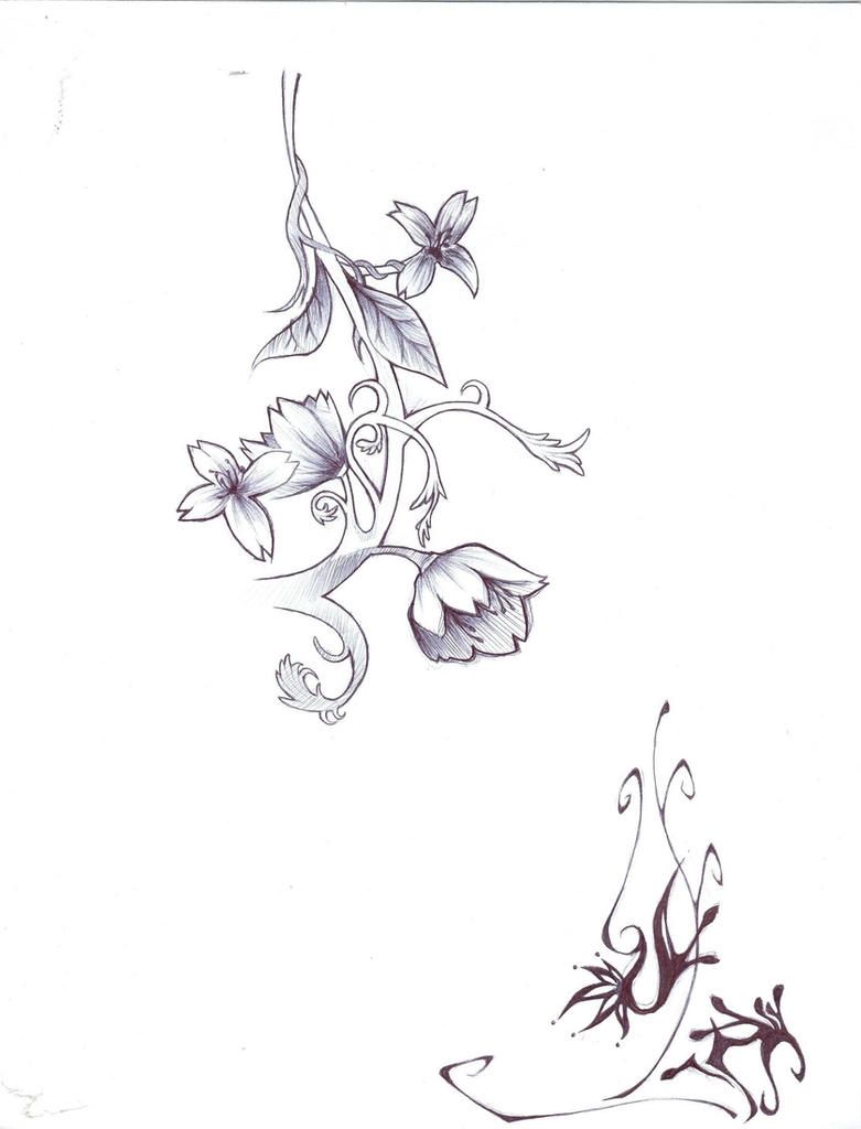 flower vine sketch by TMT89 on DeviantArt