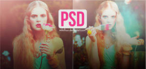 PSD coloring 8