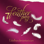 Feather png pack