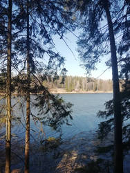 lake in forest 1