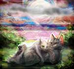 Silver Dream