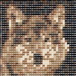 Wolf Mosaic layout