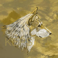 Mexican Wolf HS1 by furocious-studios