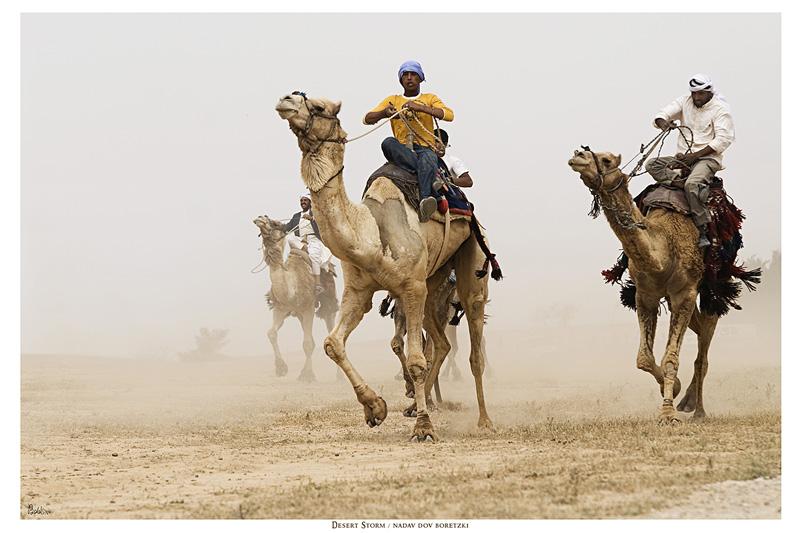 Desert Storm by NadavDov