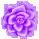 Misc Icon - 003 Rose Purple