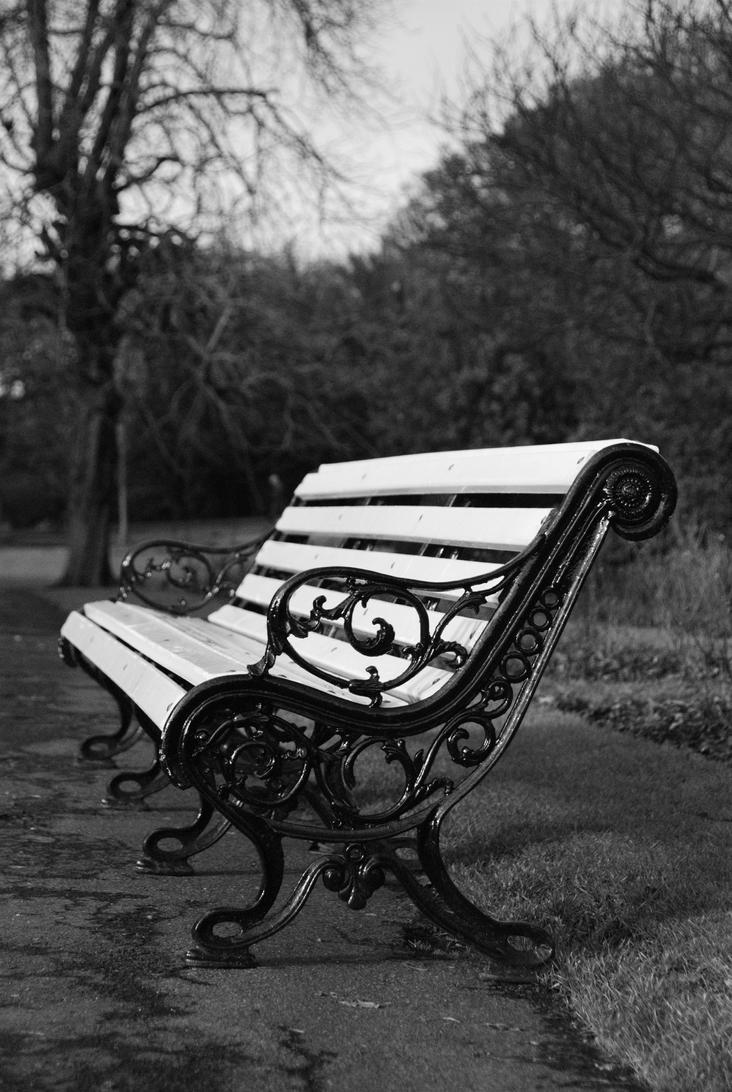 Dublin - Phoenix Park Bench by RickMunish