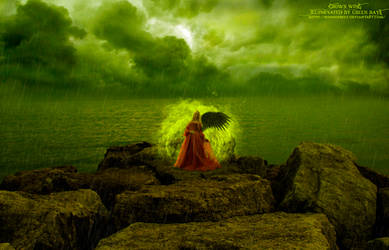 Crow's wing illuminated by green rays