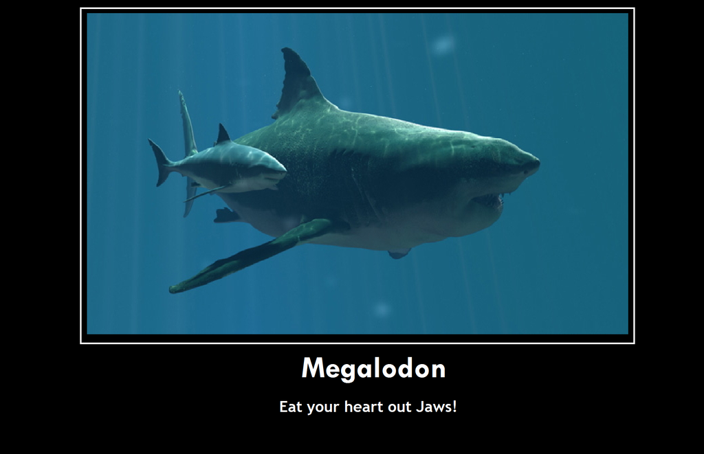 Funny Megalodon Pictures to Pin on Pinterest - PinsDaddy