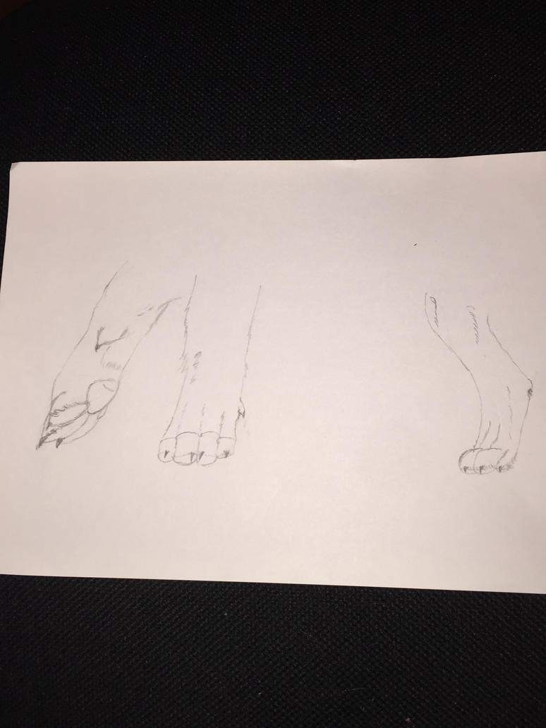 Some feet by Amalysis