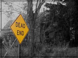 Haunted House on Dead End Road by aliencatx
