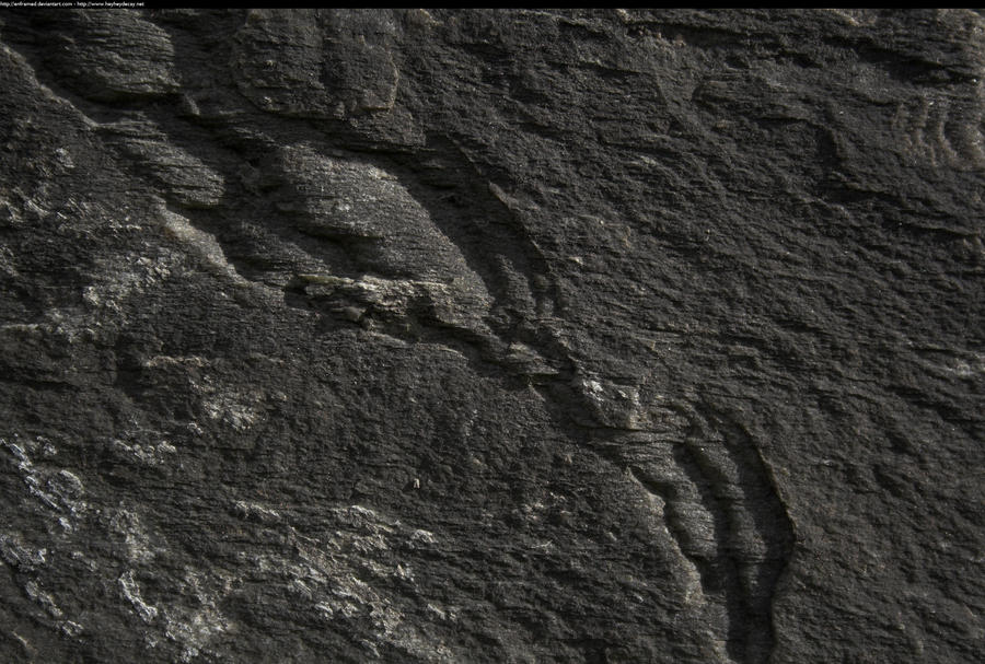 Rough Black Granite : Rough stone texture by enframed on deviantart