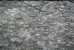 stone texture l1