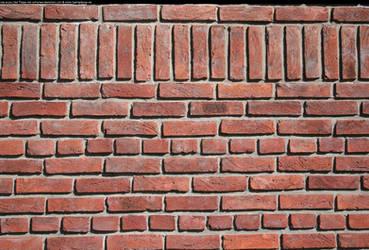 Brick wall with border