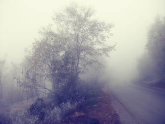 Misty Path by moonchild-lj-stock