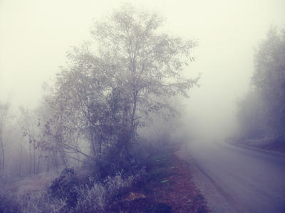 Misty Path by moonchild-lj-stock