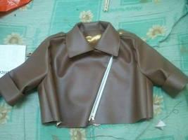 Rogue Jacket by bunnybearme